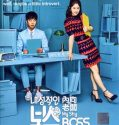Nonton Serial Drakor Introverted Boss Subtitle Indonesia