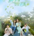 Beautiful Love, Wonderful Life 2019 Subtitle Indonesia
