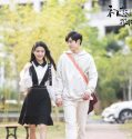 Nonton Drama A Little Thing Called First Love 2019 Subtitle Indonesia