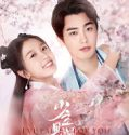 Nonton Drama Mandarin I've Fallen for You 2020 Sub Indo