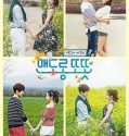 Nonton Serial Drama Korea Warm and Cozy 2015 Sub Indo