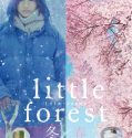 Nonton Movie Little Forest Winter Spring 2015 Subtitle Indonesia