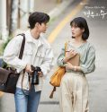 Nonton Serial Drama Korea More Than Friends 2020 Subtitle Indonesia